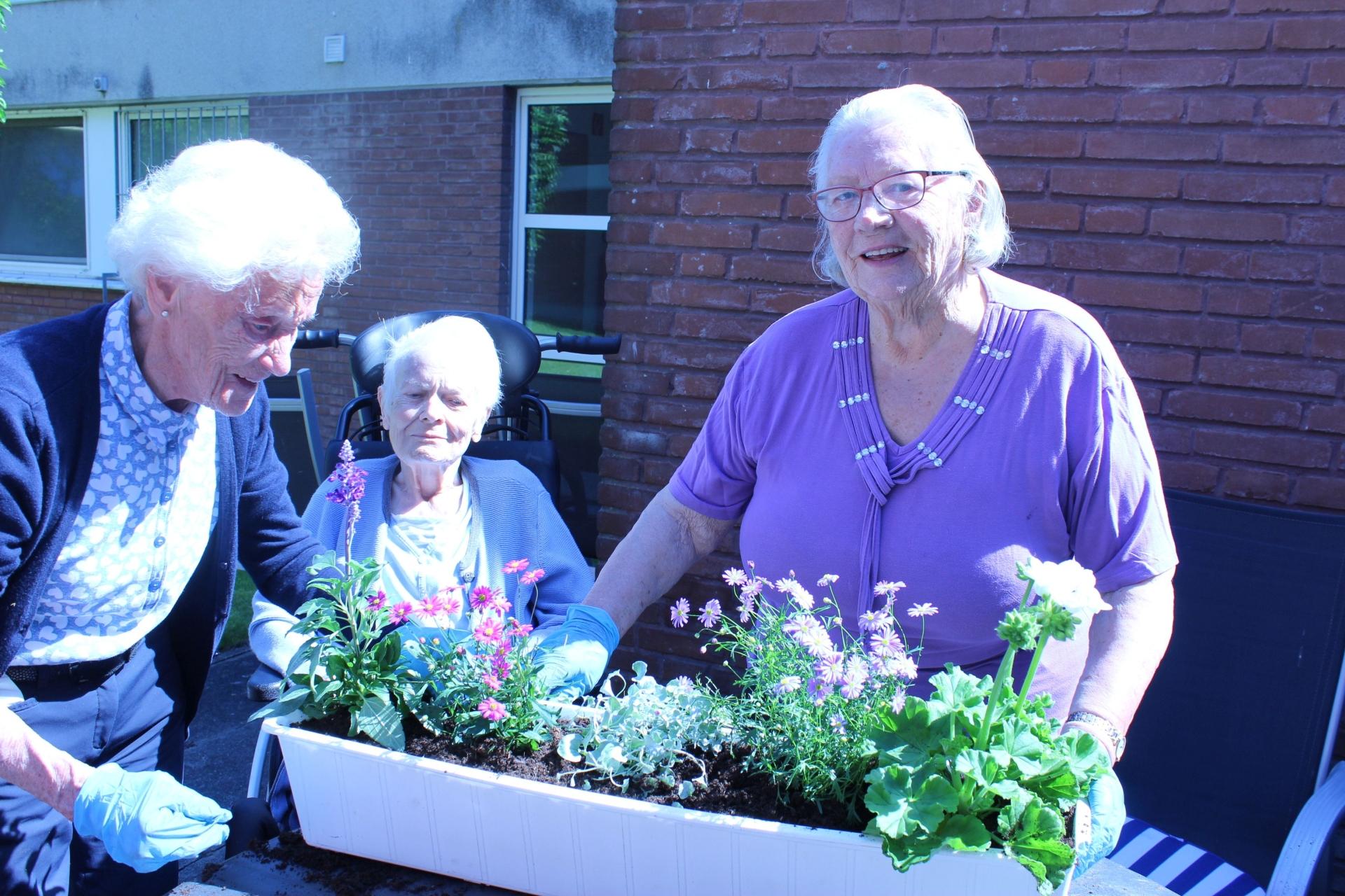 Foto: drei Bewohnerinnen beim Blumenpflanzen
